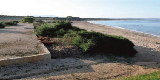 Sea Front Investment Land for Sale – Romanos/Pylos