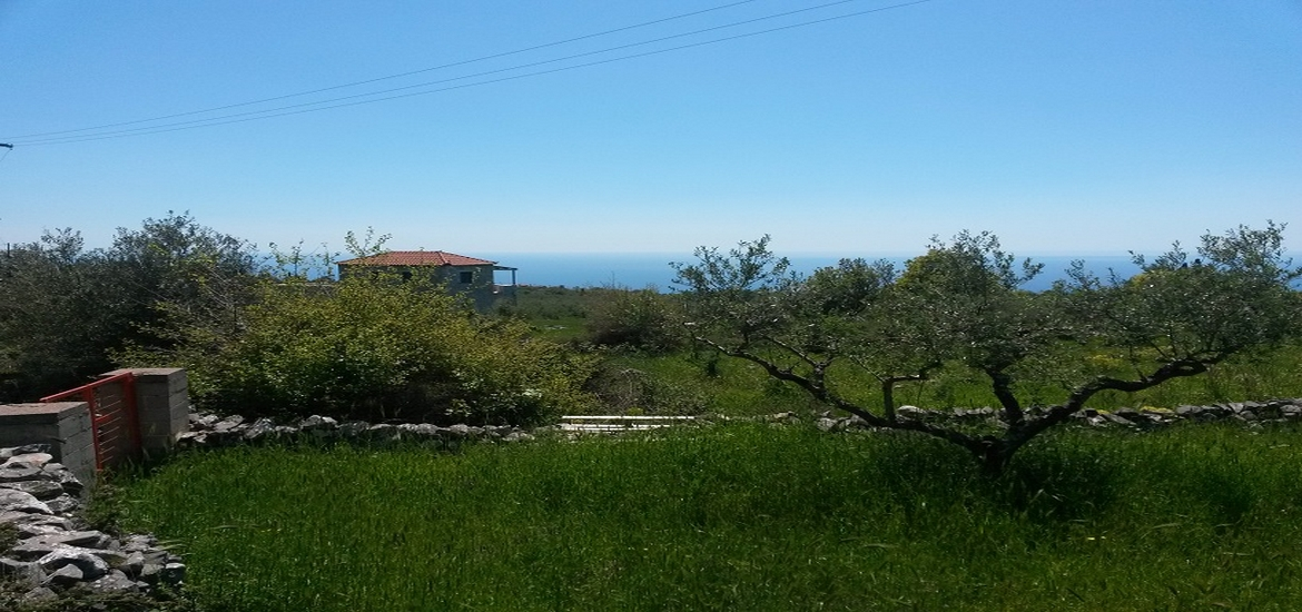 Sea View Investment Land for Sale – Pyrgos/Mani