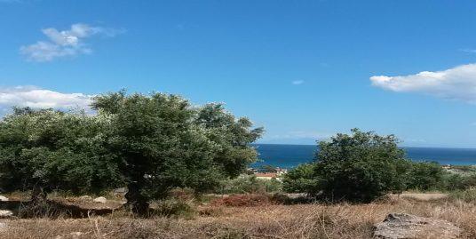 Sea View Land for sale – Episkopi – Chrani