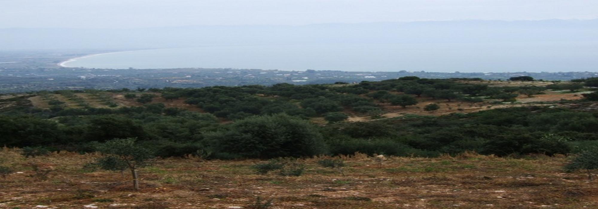Sea View Land for Sale – Kastania – Petalidi