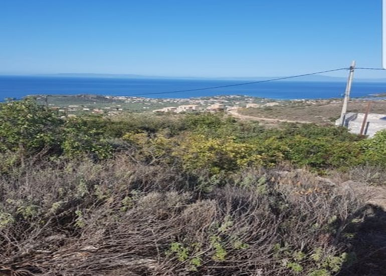 Sea View Land for Sale in Neochori/Mani with Planning Permit